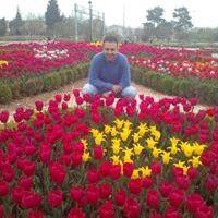 Orhan Hamdi