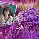 Anita Hajdu