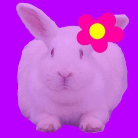 PurpleHello98 .