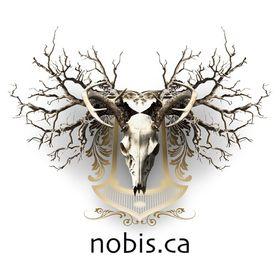 Nobis Inc