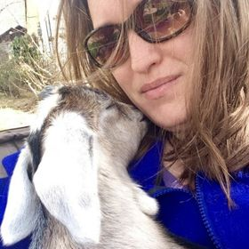 The Free Range Life   Vegetable Gardening, Homesteading, & Goats