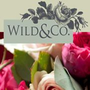 Wild and Co Flowers