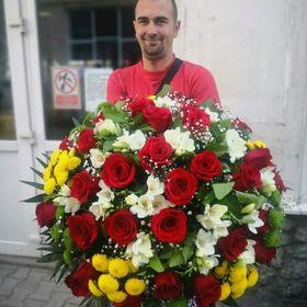 Floraria Alex