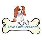I Love Cavaliers.com