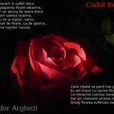 Codul Rosu