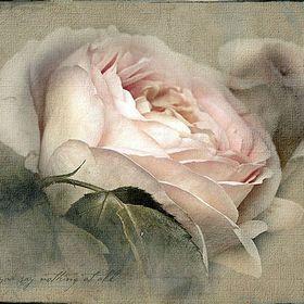 Silk.mix-flowers