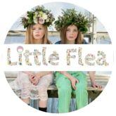 Little Flea - Kids magazine