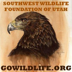 Southwest Wildlife Foundation