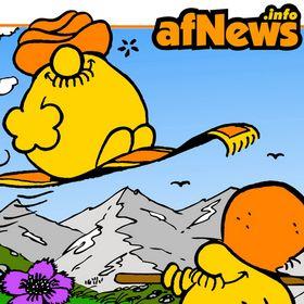 Afnews Info
