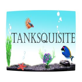 Tanksquisite | fish supplies