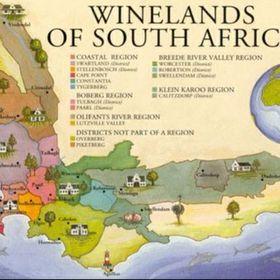 Vini Sudafrica
