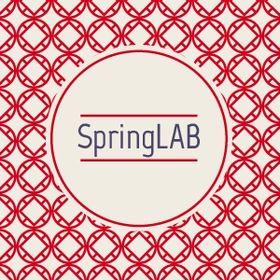 SpringLab