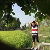 Ly Yangfo