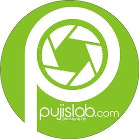 pujislab.com