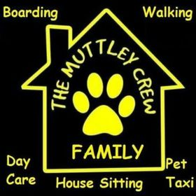 The Muttley Crew Family- CLOSED