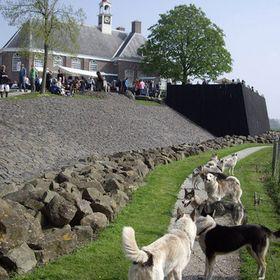 Scandinavië Markt