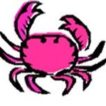The Pink Crab