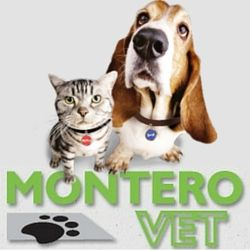 MonteroVet