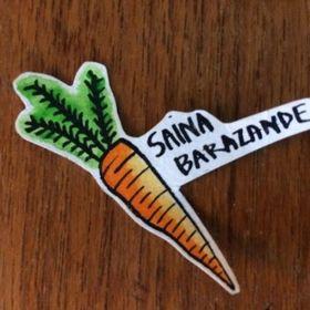 Saina Barazande