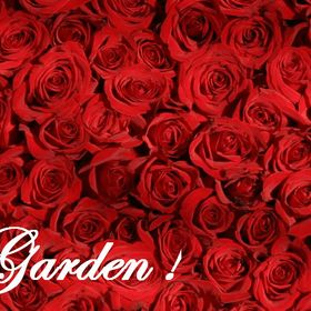 Your Awesome Garden