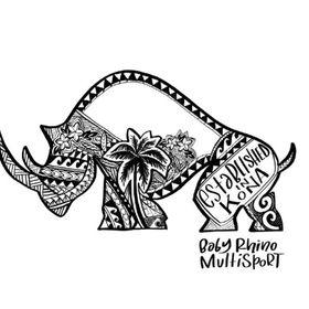 9131fcafa4 Baby Rhino Multisport (babyrhinomultisport) on Pinterest