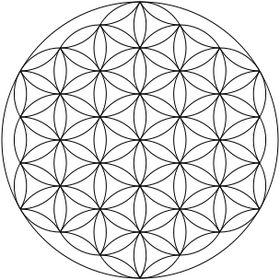 metaphysicality-inc-store.myshopify.com