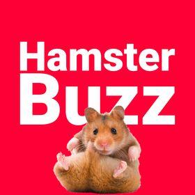 HamsterBuzz