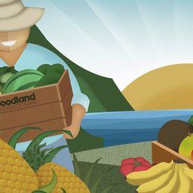 Foodland Hawaii