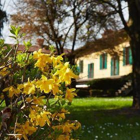 Villa Teodolinda (villateodolinda) su Pinterest