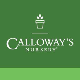 Calloway S Nursery Callowaysplants On