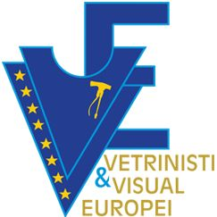 Vetrinisti & Visual Europei