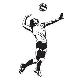 Galaxias Volley