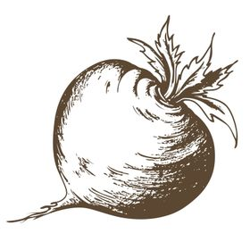 Urban Turnip