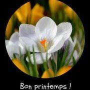 Lyne St-Amour