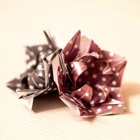 Clara Origami
