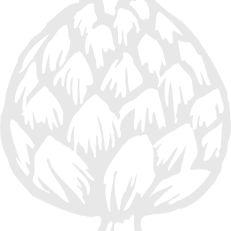 Artichoke - Ageless Style