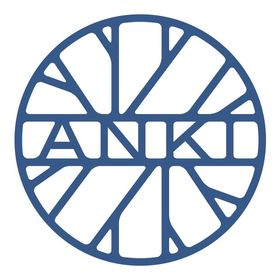 Anki Rugs