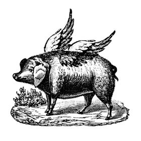 Dawn Williams/When Pigs Fly Again