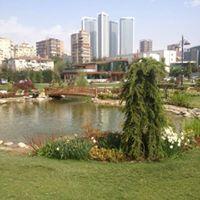 Nilufer Babacan