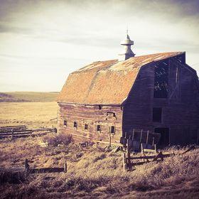 Dreams of Farmhouse Living