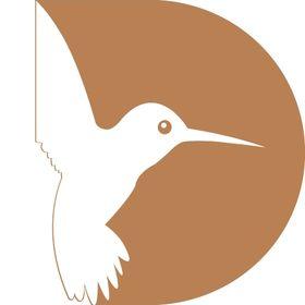Design Birds