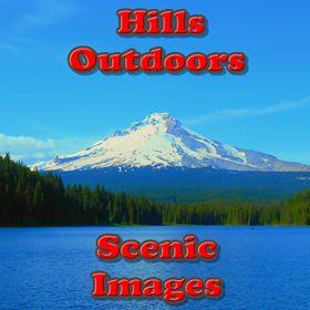 L. D. Hills