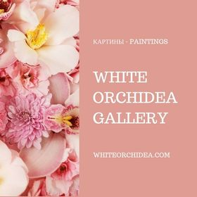 White Orchidea Gallery