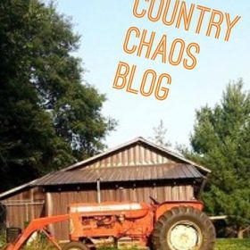 Crystal Stevenson @ Country Chaos Blog | Encouragement, Hope, Faith, Natural Living