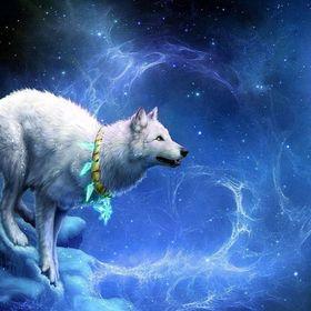 ilovewolves L