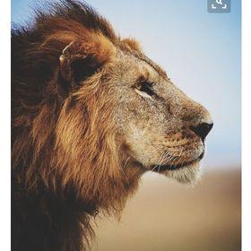 Gohar The Lioner