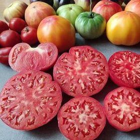 Chiliandtomato Seeds