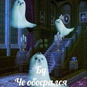 Lera Khanenko