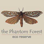 Phantom Forest Eco Reserve