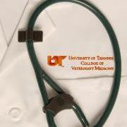 UT College of Veterinary Medicine